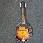 Mandolina Fender PZ 1350 kč