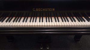 Křídlo C. Bechstein